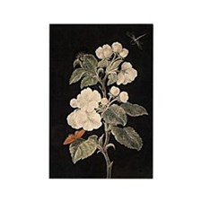 Apple Flowers painting Rectangle Magnet