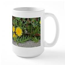 Close Up Dandelion Mugs