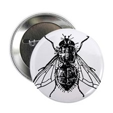"""Funny Bugs and insects 2.25"""" Button"""