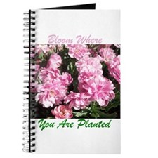 Bloom Where You Are Planted 01 Journal