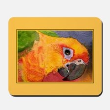 Sun Conure Parrot  Mousepad