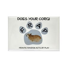 Welsh Corgi Frapping Rectangle Magnet