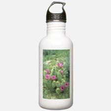 Pink Cactus Desert Water Bottle