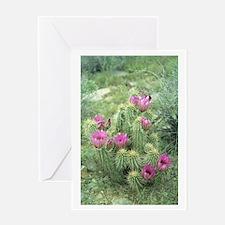 Pink Cactus Desert Greeting Card