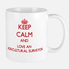Keep Calm and Love an Agricultural Surveyor Mugs