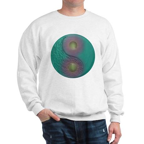 Yin Yang Tao Optic Rainbow Sweatshirt