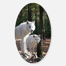 White Wolves Sticker (Oval)