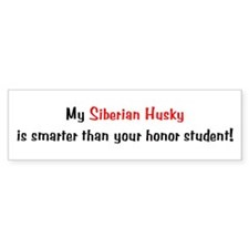 My Siberian Husky is smarter... Bumper Car Sticker