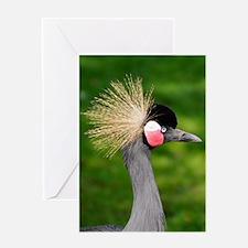 Grey Crowned Crane Greeting Cards