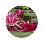 Lotus Flower Blossom 3.5