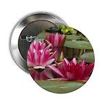 Lotus Flower Blossom 2.25