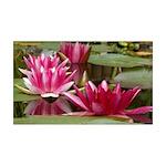 Lotus Flower Blossom 35x21 Wall Decal
