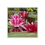 Lotus Flower Blossom Square Sticker 3