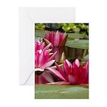 Lotus Flower Blossom Greeting Cards (Pk of 20)