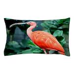 Stunning Scarlet Ibis Pillow Case