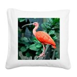 Stunning Scarlet Ibis Square Canvas Pillow