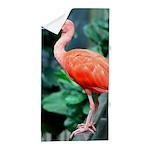 Stunning Scarlet Ibis Beach Towel