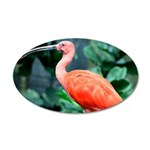 Stunning Scarlet Ibis 35x21 Oval Wall Decal