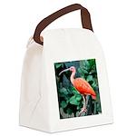 Stunning Scarlet Ibis Canvas Lunch Bag