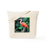 Stunning Scarlet Ibis Tote Bag