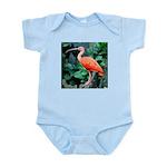 Stunning Scarlet Ibis Infant Bodysuit