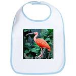 Stunning Scarlet Ibis Bib