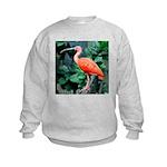 Stunning Scarlet Ibis Kids Sweatshirt