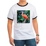 Stunning Scarlet Ibis Ringer T