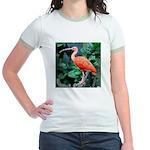 Stunning Scarlet Ibis Jr. Ringer T-Shirt