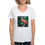 Stunning Scarlet Ibis Women's V-Neck T-Shirt