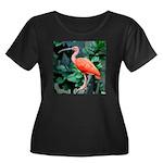Stunning Women's Plus Size Scoop Neck Dark T-Shirt
