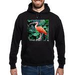 Stunning Scarlet Ibis Hoodie (dark)
