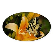 Swallowtail Butterfly Decal