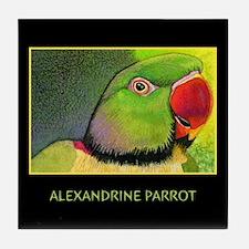 Alexandrine Parrot Tile Coaster