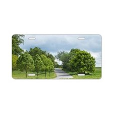 landschaft mit straße und b Aluminum License Plate