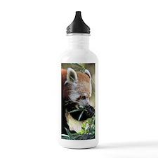 Red Panda 002 Water Bottle