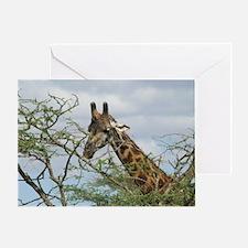 Funny Savanna Greeting Card