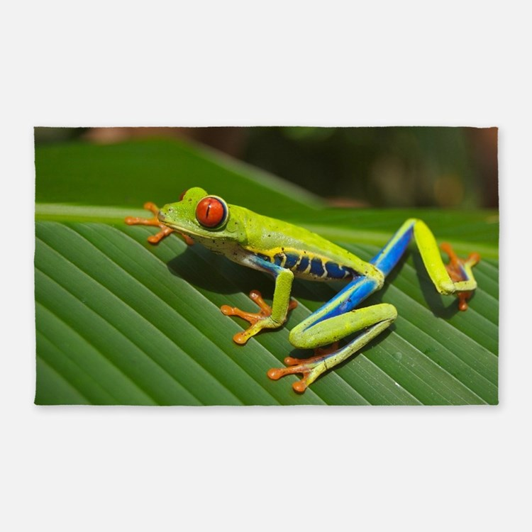 Frog Rugs, Frog Area Rugs