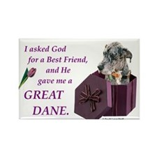 Great Dane (Blue Merle) Rectangle Magnet