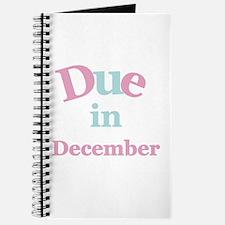 Pink Due in December Journal