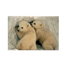 Polar Bear Cubs in the Snow Rectangle Magnet