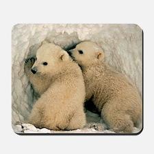 Polar Bear Cubs in the Snow Mousepad