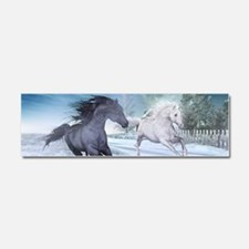 Freedom in the snow Car Magnet 10 x 3