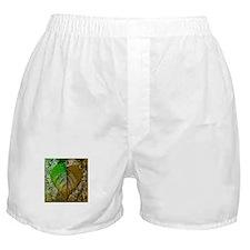Cool Color change Boxer Shorts