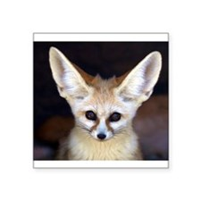Fennec fox Sticker