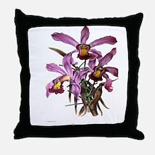 Paxton's Lalia Superbiens Throw Pillow
