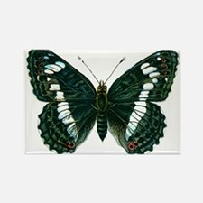 Birthday Gifts Butterfly Magnets