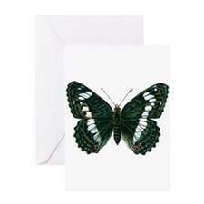 Birthday Gifts Butterfly Greeting Cards