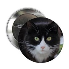 """Black and White Cat 2.25"""" Button (10 pack)"""