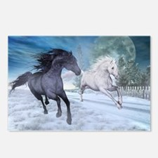Freedom in the snow Postcards (Package of 8)